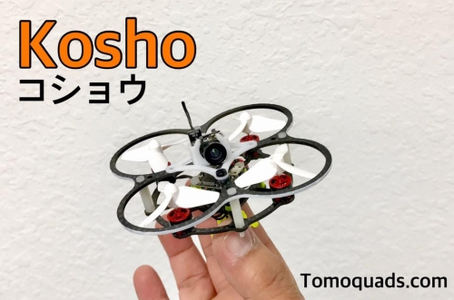 Kosho  コショウ   A true 1S Tiny Whoop size Nano Quad